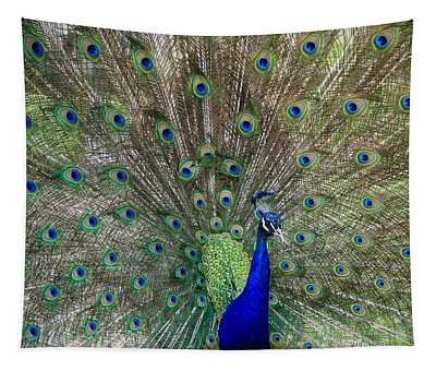 The Male Peacock Tapestry