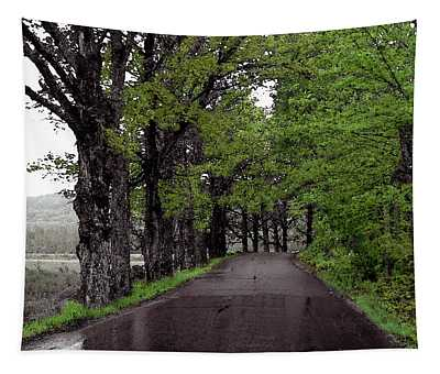 The Maples Of George Road Tapestry