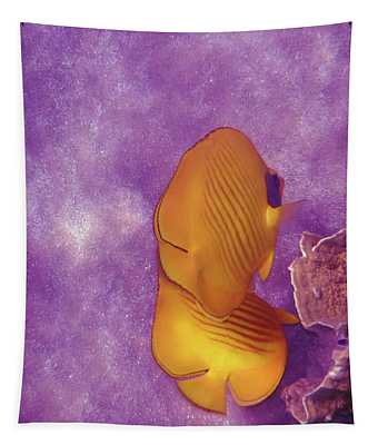 The Masked Butterflyfish Purple Tapestry