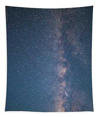 The Milky Way In Arizona Tapestry