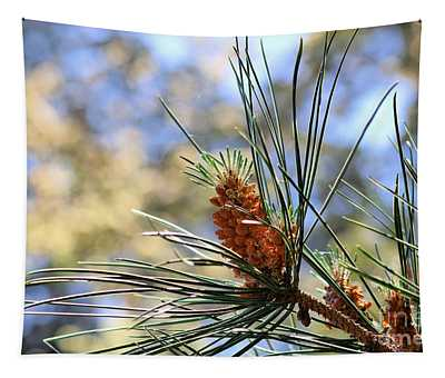 The Monterey Pine  Tapestry