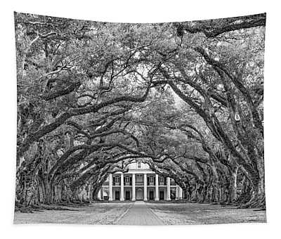 The Old South Version 3 Bw Tapestry