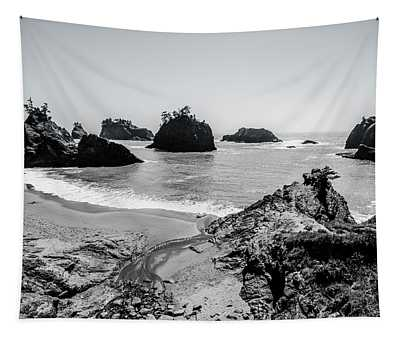 The Oregon Coast In Black And White Tapestry