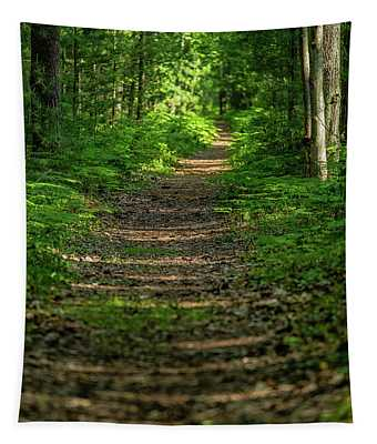 The Path Less Traveled Tapestry