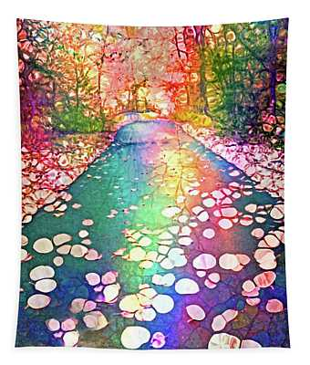 The Path Where Rainbows Meet Tapestry