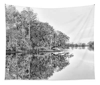 The Point At Coosaw Plantation Tapestry