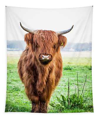 Tapestry featuring the photograph The Scottish Highlander by Anjo Ten Kate