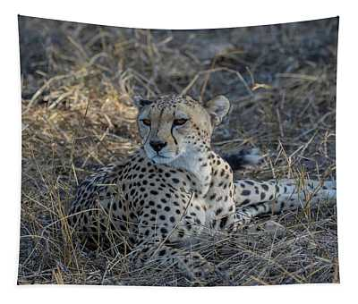 Cheetah In Repose Tapestry