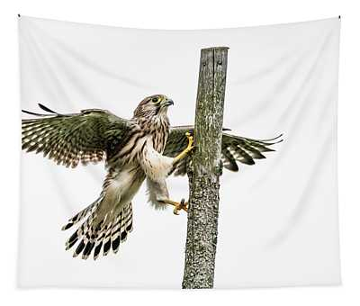 The Young Kestrel Climbing On A Wooden Fence Pole Tapestry