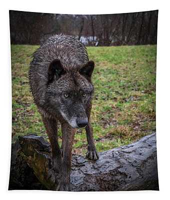 This Is My Log Tapestry