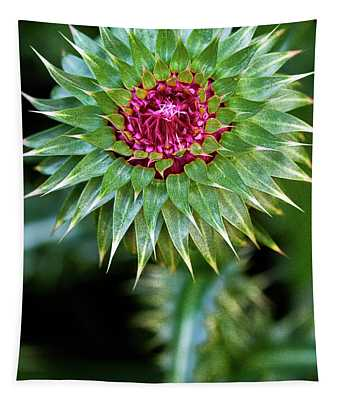 Thistle Bloom Tapestry