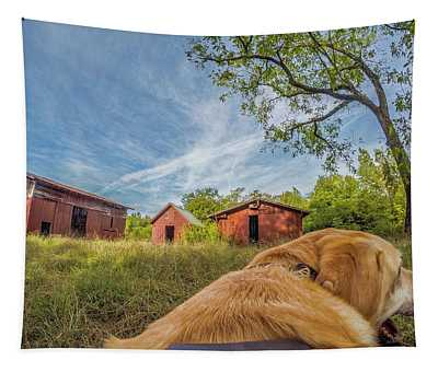 Thornburg Barns By Photo Dog Jackson Tapestry