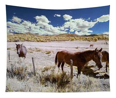 Three Horses In Colorado Tapestry