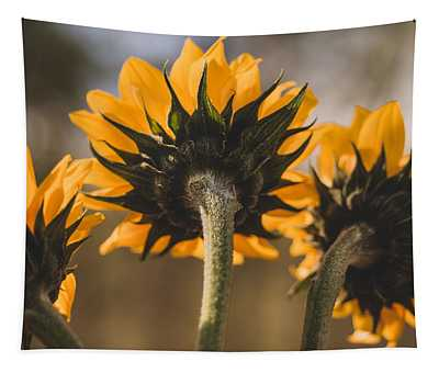 Three Sunflower Rear View Tapestry