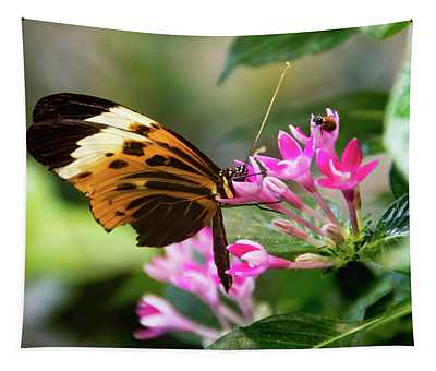 Tiger Longwing Butterfly Drinking Nectar  Tapestry