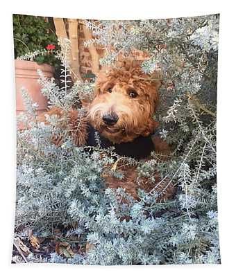 Tillie Tapestry