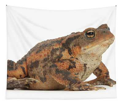 Toad The Line Tapestry