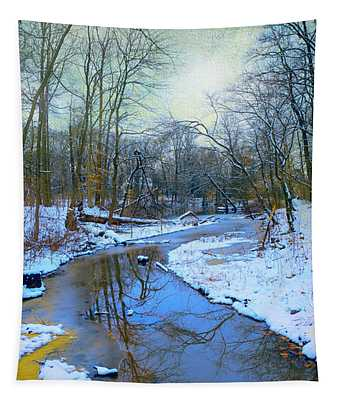 Today's Snow Tapestry