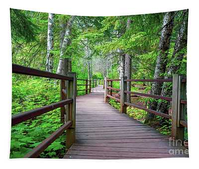 Trail At Gooseberry Falls Tapestry