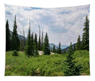 Trail To Gilpin Lake Tapestry