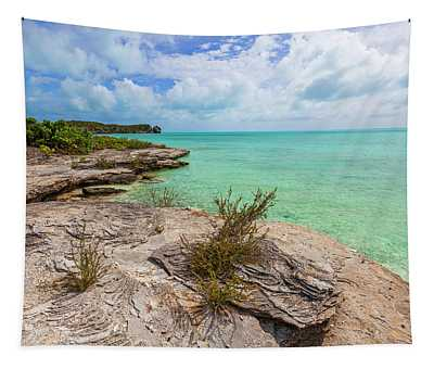 Tranquil Sea Tapestry