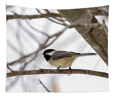 Tranquil Winter Chickadee Tapestry
