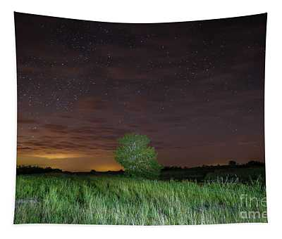 Tree And Starry Night Tapestry