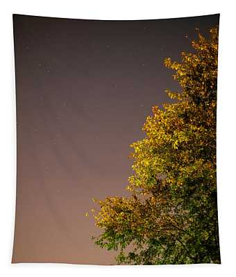 Tree And Stars Tapestry