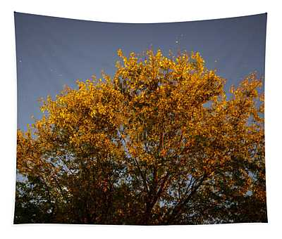 Tree And Stars Wide Tapestry