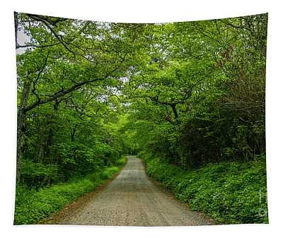 Tree Lined Country Road Tapestry