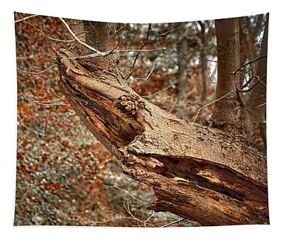 Tree Shark Abstraction Tapestry