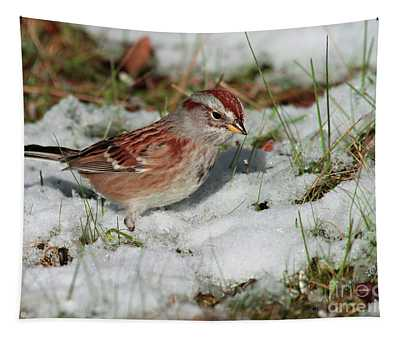 Tree Sparrow In Snow Tapestry