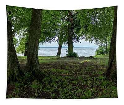 Trees At The Beach Of Lake Kisajno Tapestry
