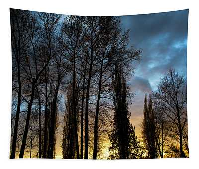 Trees In Blue Hour Tapestry