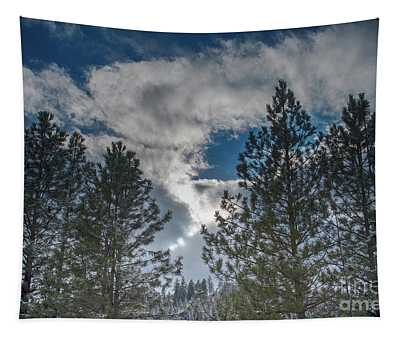 Tapestry featuring the photograph Trees Near The Spokane River by Matthew Nelson