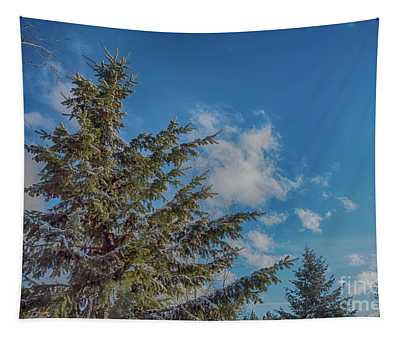 Tapestry featuring the photograph Treetops Winter by Matthew Nelson
