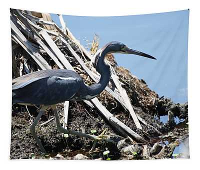 Tri-colored Heron 40312 Tapestry