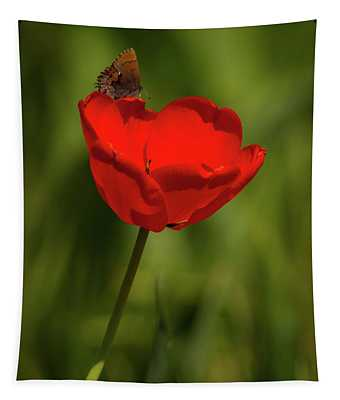 Tulip And Skipper Tapestry