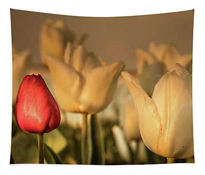 Tapestry featuring the photograph Tulip Field by Anjo ten Kate
