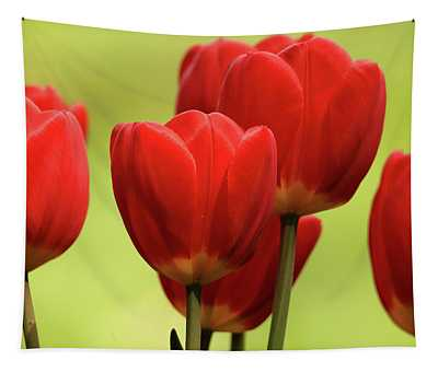 Tulips Fragmented  Tapestry