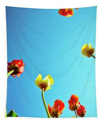 Tulips Holland Michigan 16 Tapestry