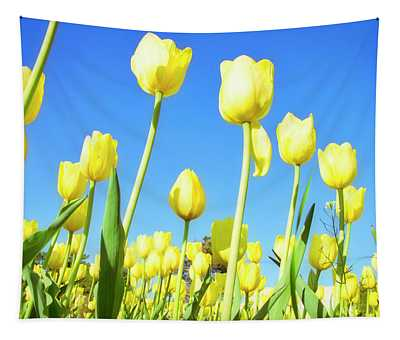 Tulips Holland Michigan 67 Tapestry