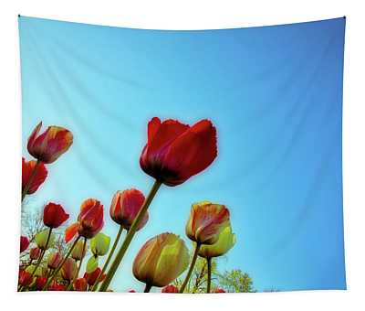 Tulips Holland Michigan 81 Tapestry