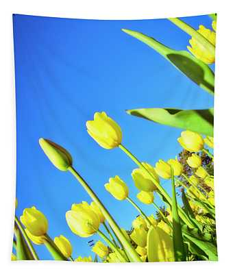 Tulips Holland  Michigan 838 Tapestry
