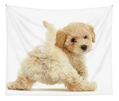 Twerking Pooshon Pup Tapestry