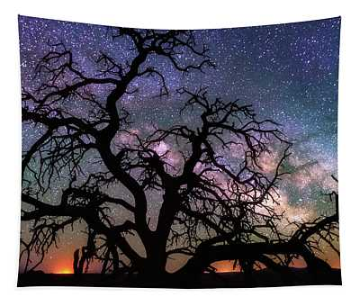 Twisted Universe Tapestry