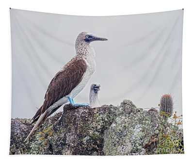 Two Blue-footed Boobies Tapestry