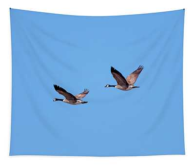 Two Canadian Geese Tapestry