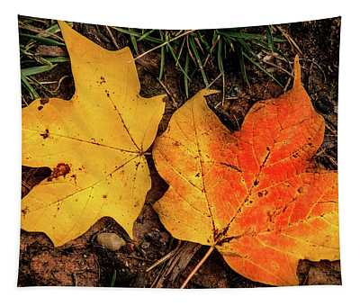 Two Fall Leaves Tapestry