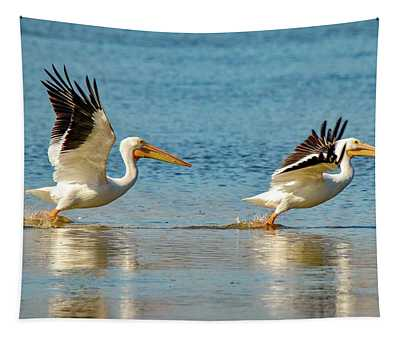 Two Pelicans Taking Off Tapestry